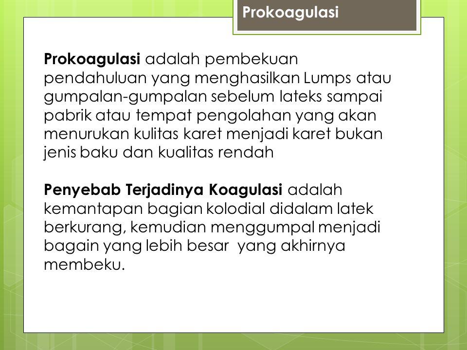 Prokoagulasi