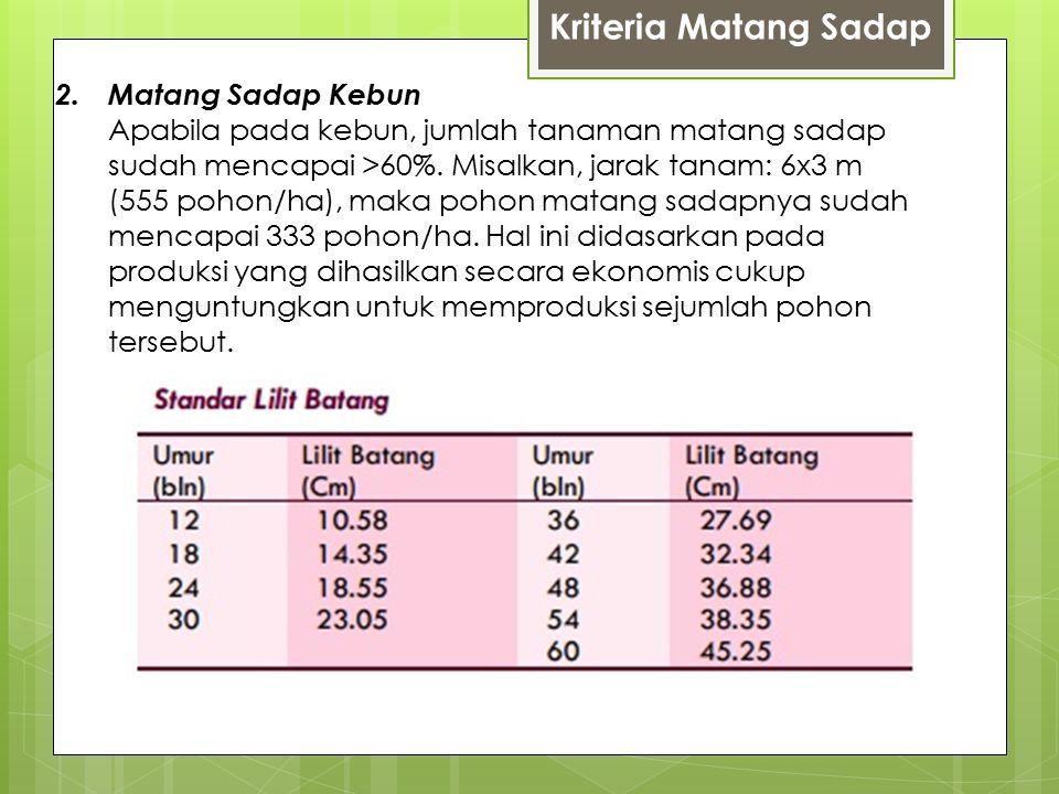 Kriteria Matang Sadap
