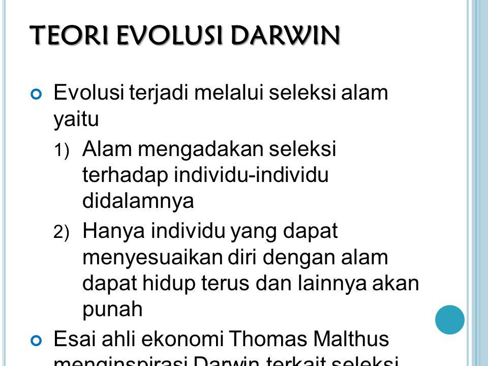 TEORI EVOLUSI DARWIN Evolusi terjadi melalui seleksi alam yaitu