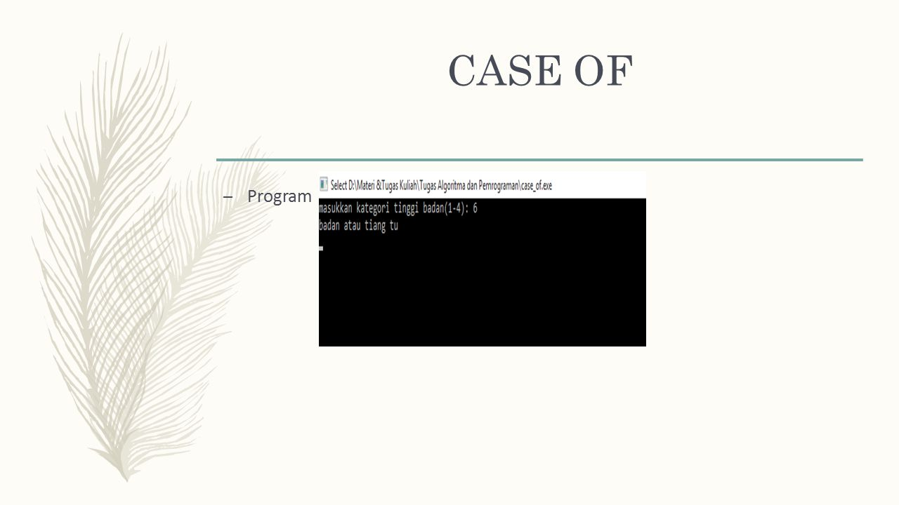 CASE OF Program