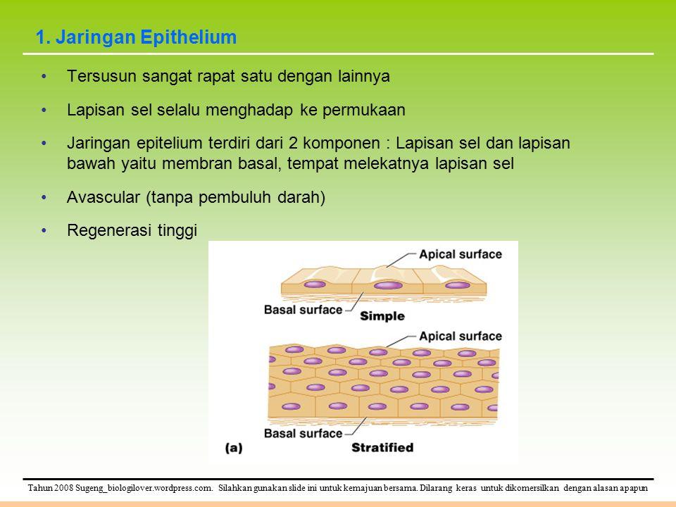 1. Jaringan Epithelium Tersusun sangat rapat satu dengan lainnya