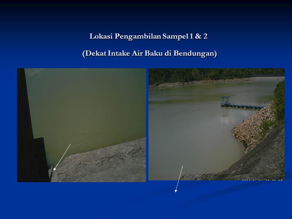 Lokasi Pengambilan Sampel 1 & 2 (Dekat Intake Air Baku di Bendungan)