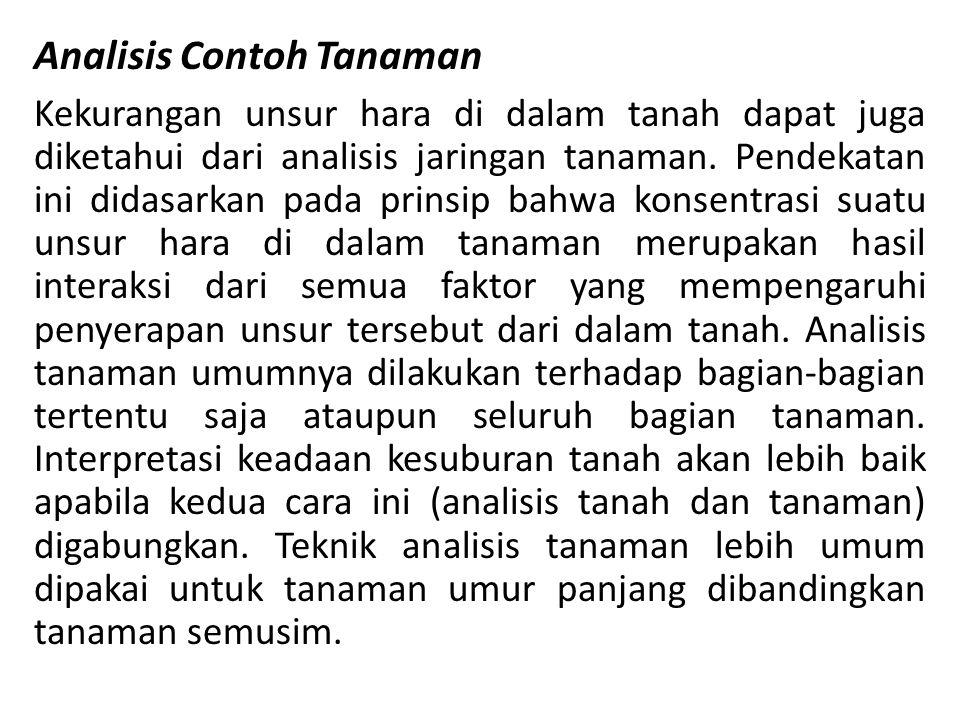 Analisis Contoh Tanaman
