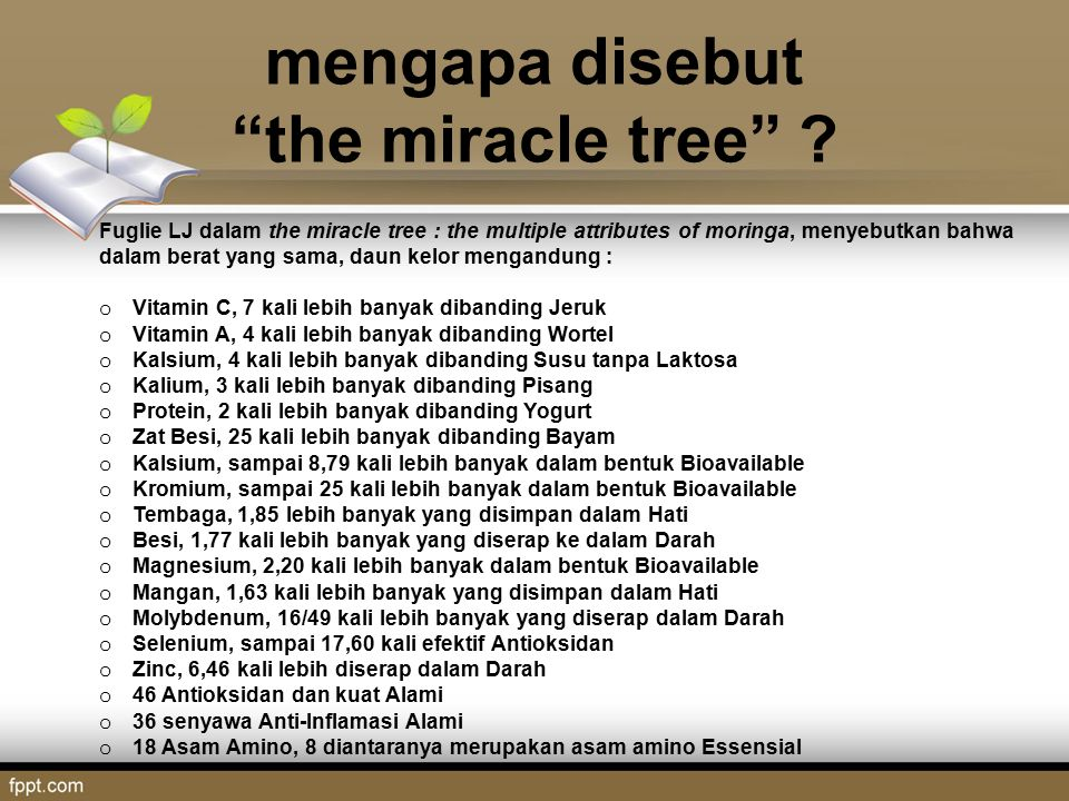 mengapa disebut the miracle tree