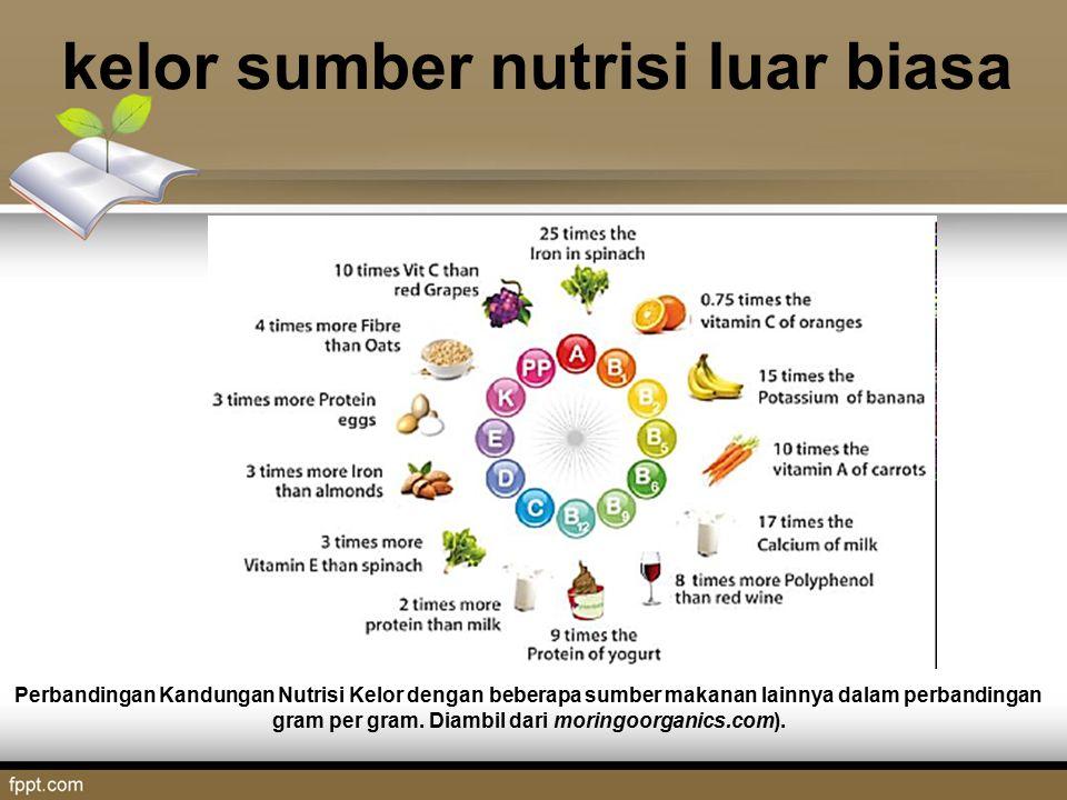 kelor sumber nutrisi luar biasa