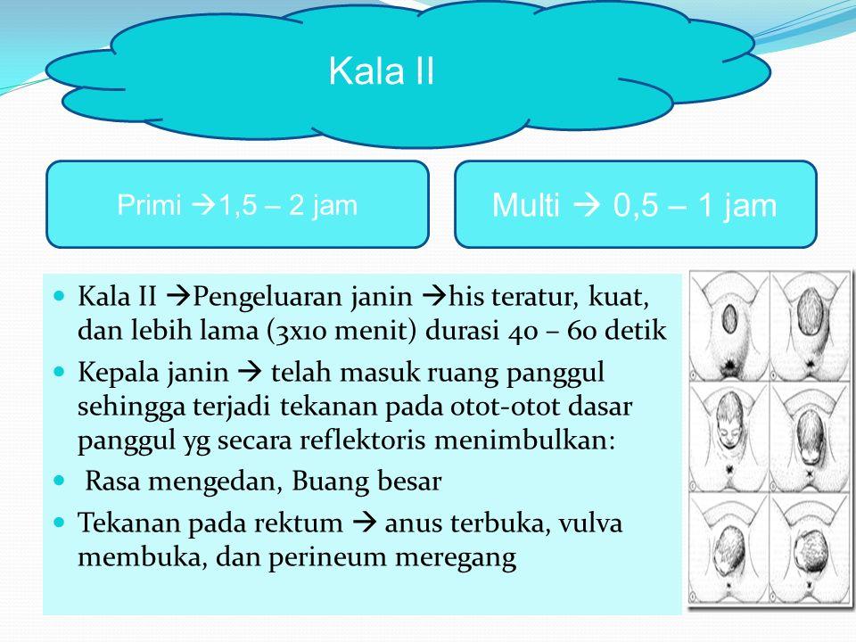 Kala II Multi  0,5 – 1 jam Primi 1,5 – 2 jam