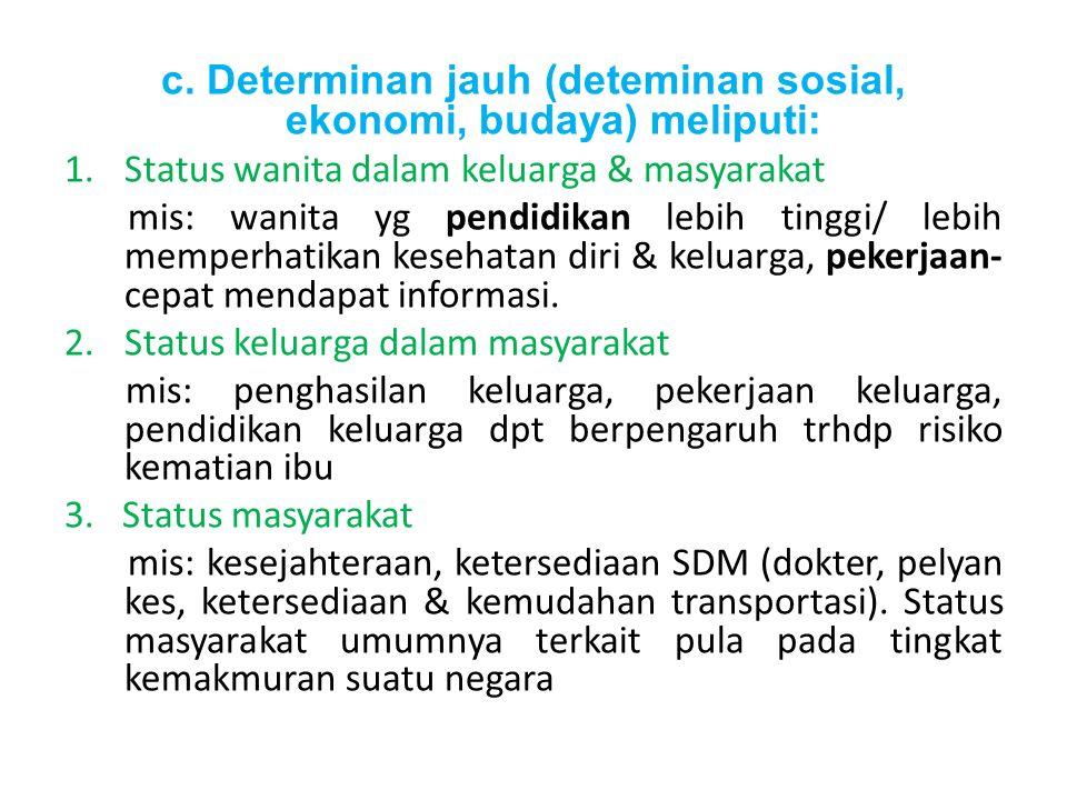 c. Determinan jauh (deteminan sosial, ekonomi, budaya) meliputi: