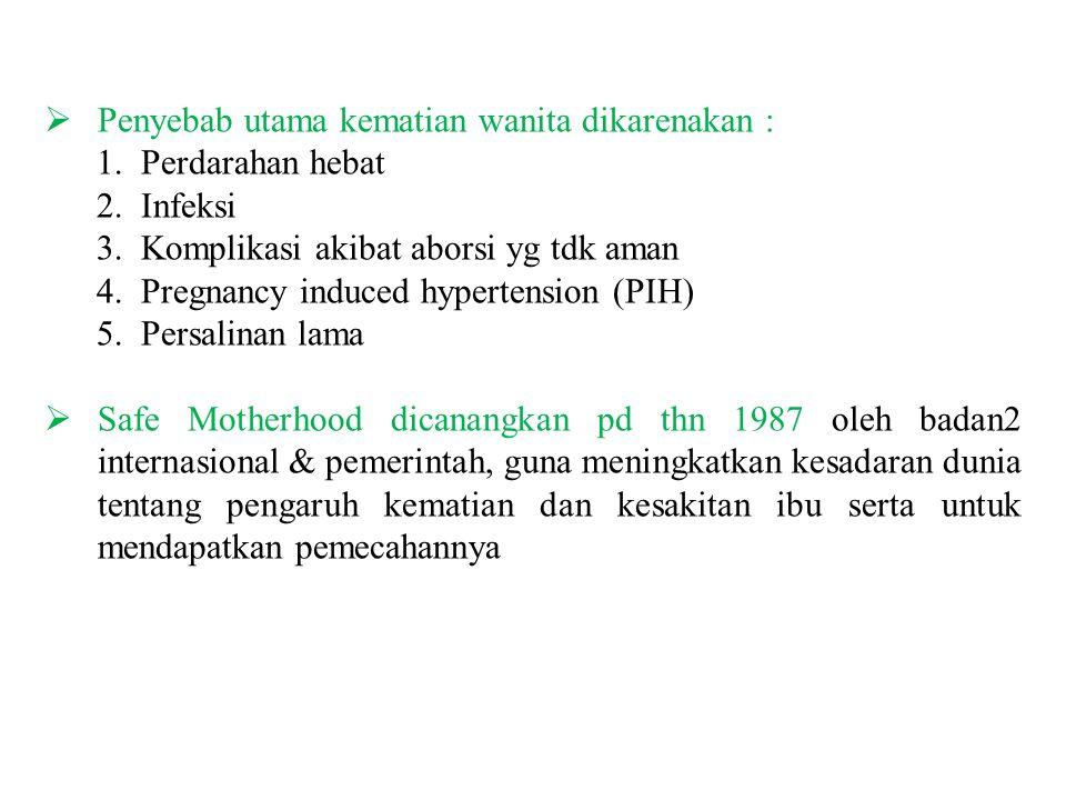 Penyebab utama kematian wanita dikarenakan :