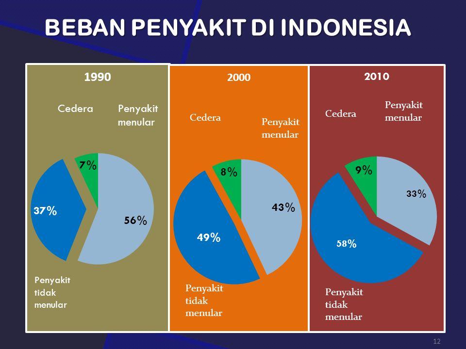 BEBAN PENYAKIT DI INDONESIA