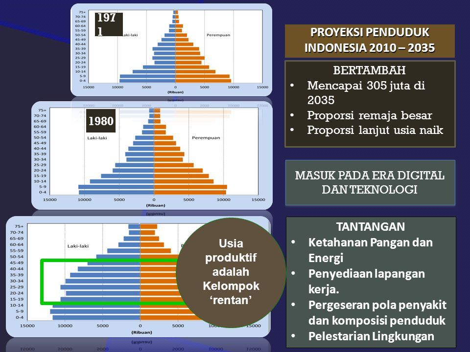 PROYEKSI PENDUDUK INDONESIA 2010 – 2035