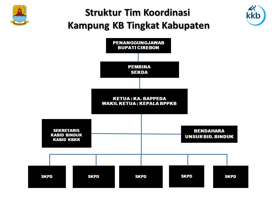 Struktur Tim Koordinasi Kampung KB Tingkat Kabupaten