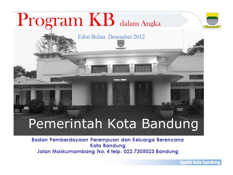 Program KB dalam Angka Pemerintah Kota Bandung