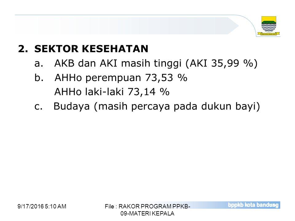 File : RAKOR PROGRAM PPKB-09-MATERI KEPALA