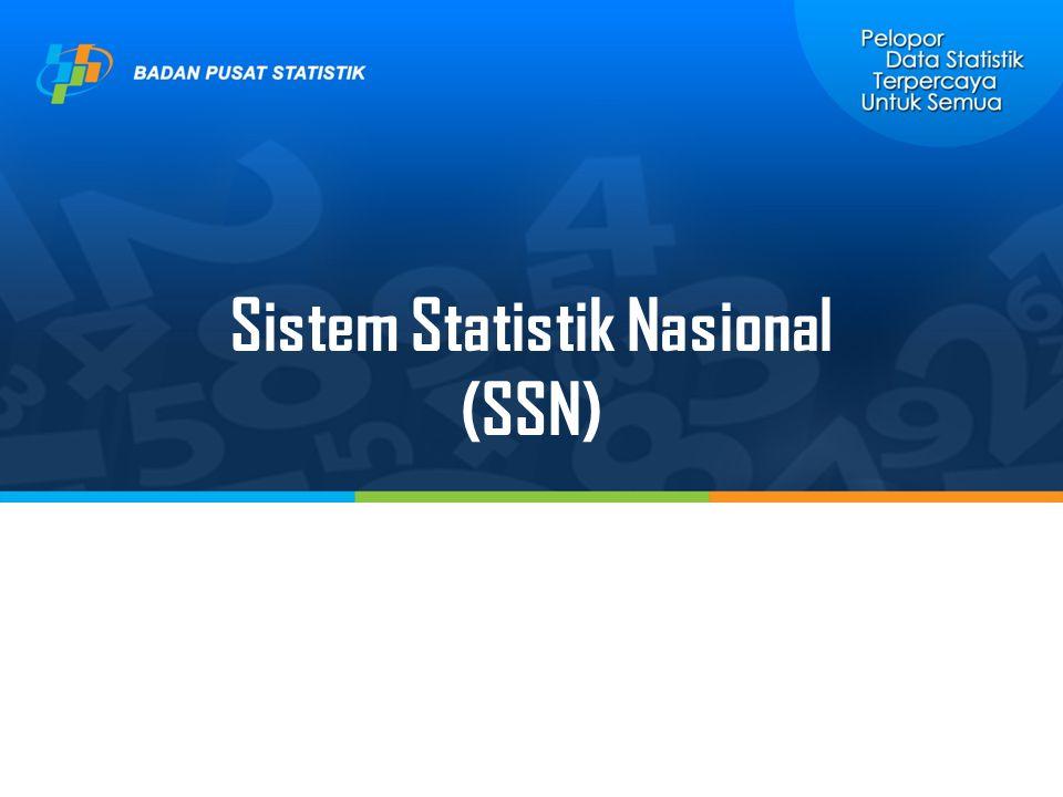 Sistem Statistik Nasional