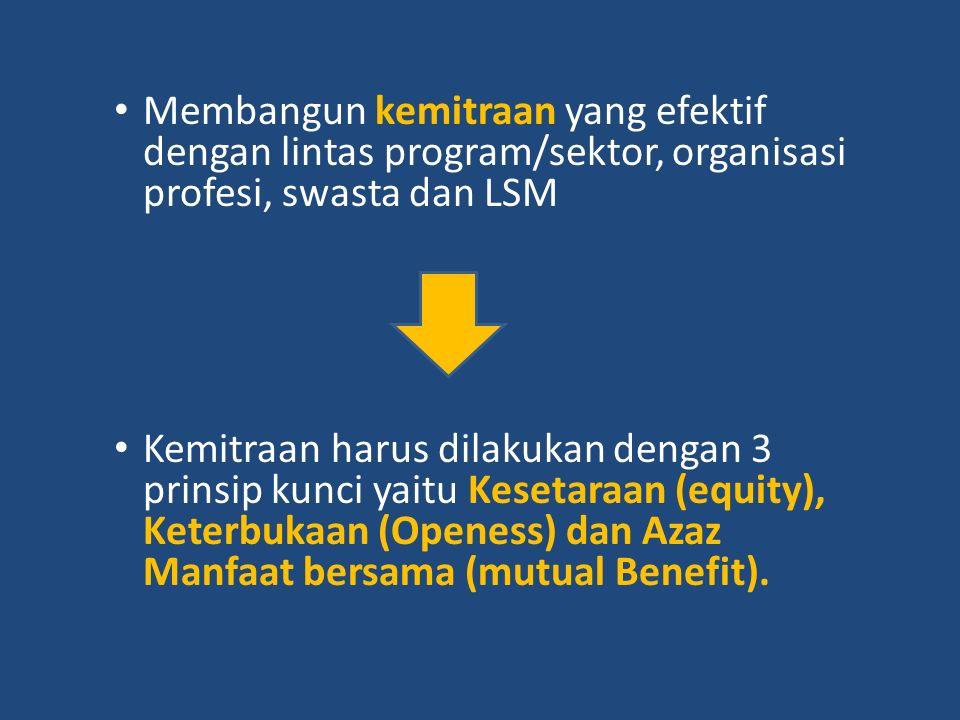 Membangun kemitraan yang efektif dengan lintas program/sektor, organisasi profesi, swasta dan LSM
