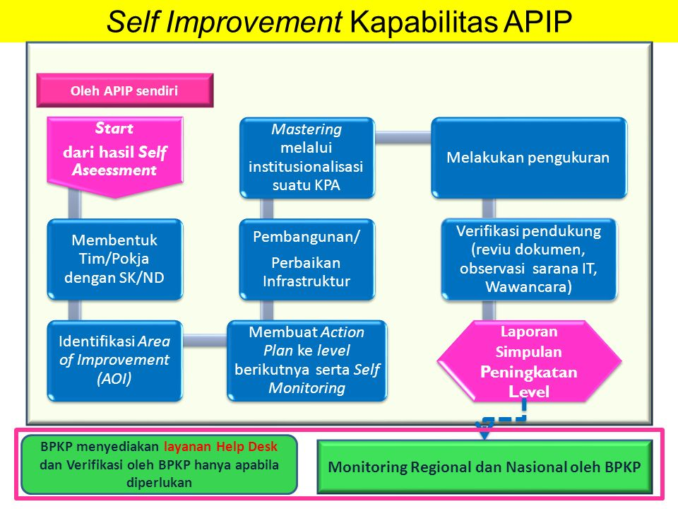 Self Improvement Kapabilitas APIP