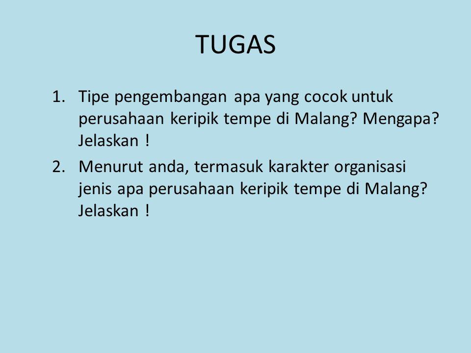 TUGAS Tipe pengembangan apa yang cocok untuk perusahaan keripik tempe di Malang Mengapa Jelaskan !