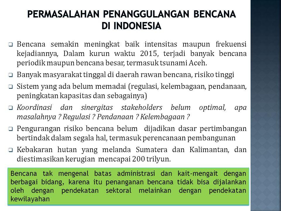 PERMASALAHAN PENANGGULANGAN BENCANA DI INDONESIA