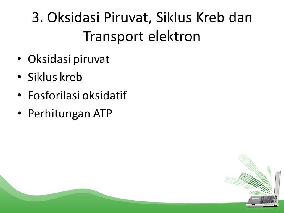 3. Oksidasi Piruvat, Siklus Kreb dan Transport elektron