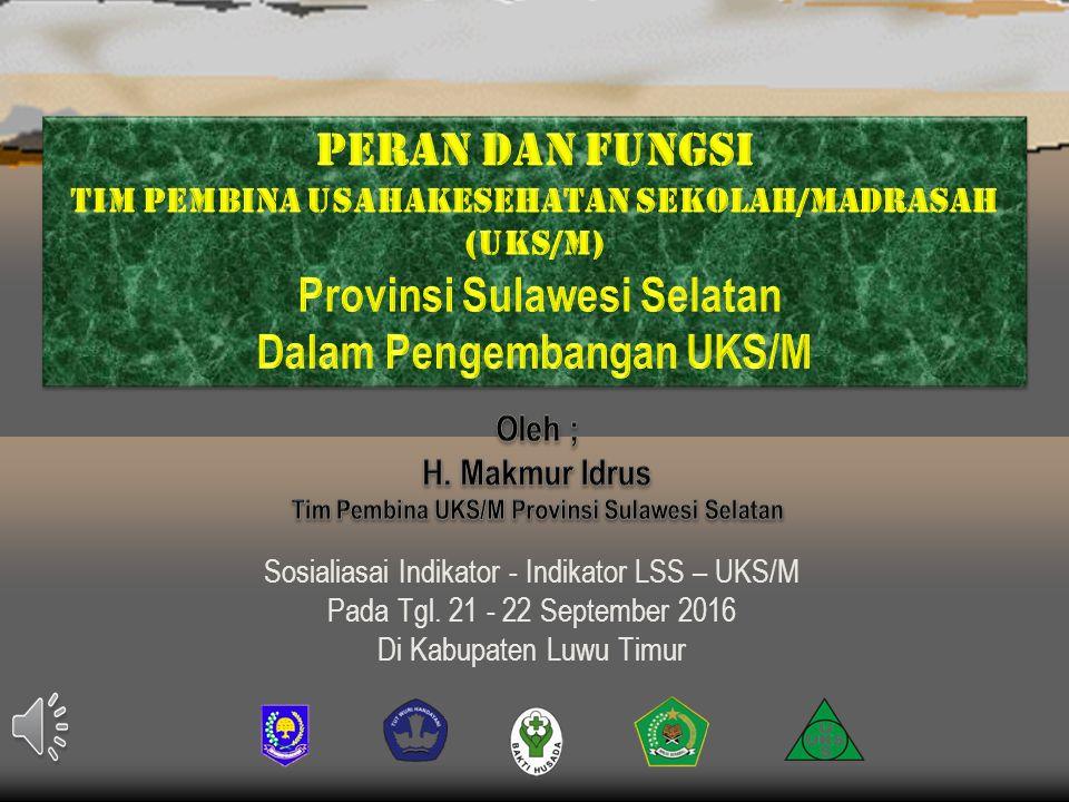 Provinsi Sulawesi Selatan Dalam Pengembangan UKS/M