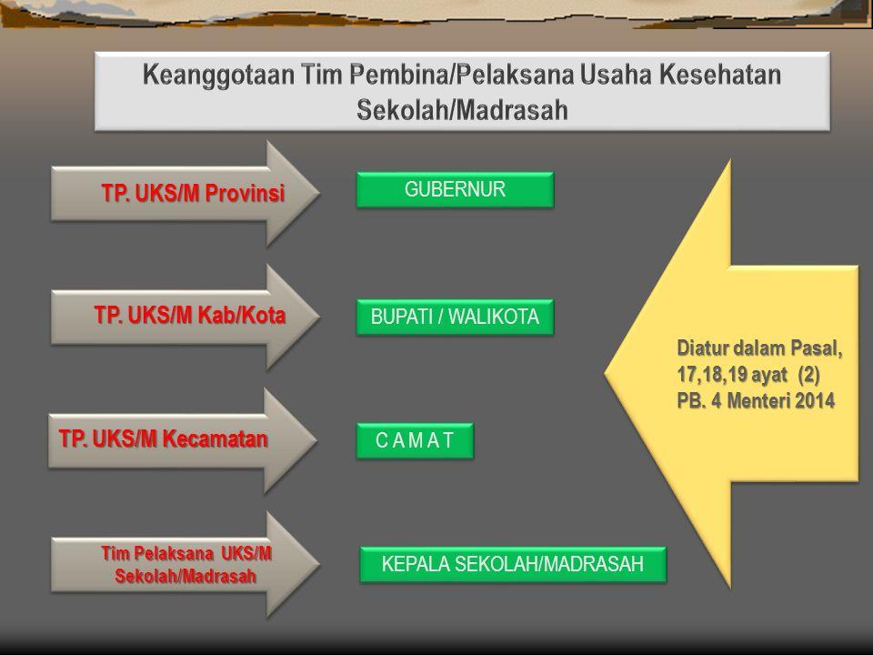 Keanggotaan Tim Pembina/Pelaksana Usaha Kesehatan Sekolah/Madrasah