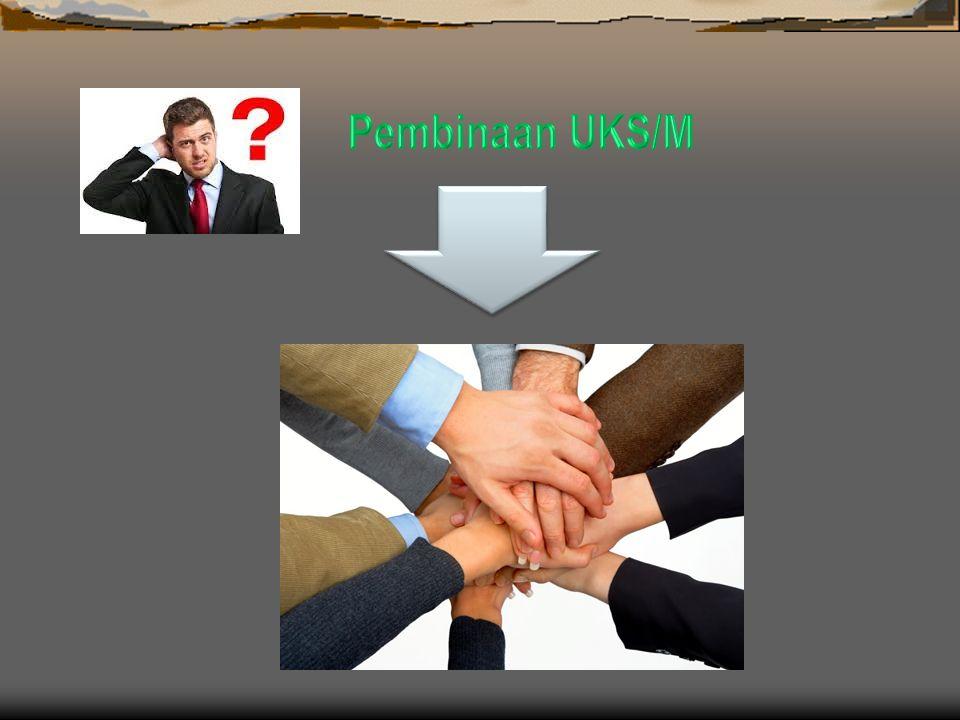 Pembinaan UKS/M