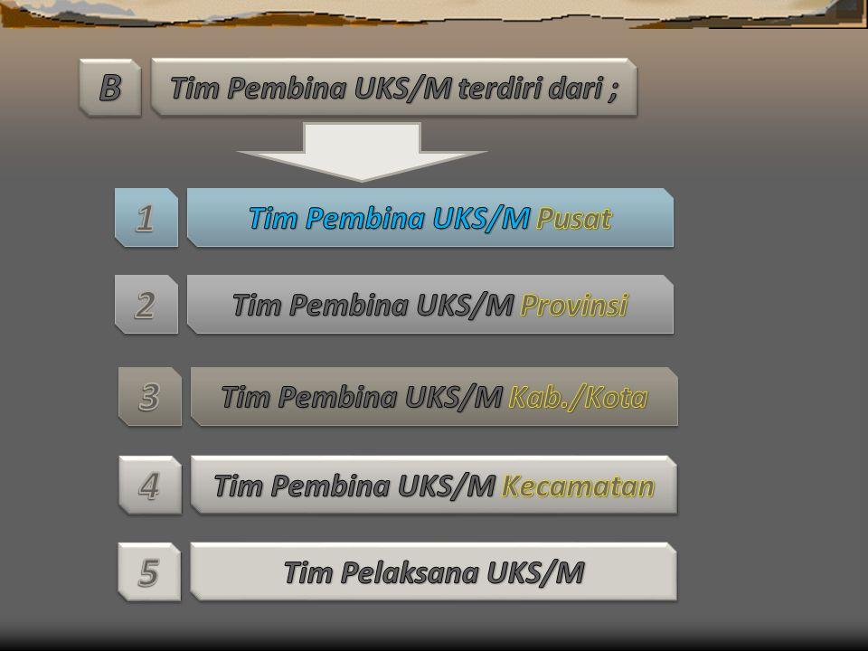 B 1 2 3 4 5 Tim Pembina UKS/M terdiri dari ; Tim Pembina UKS/M Pusat