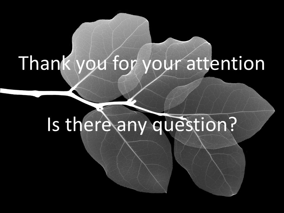 Thank you for your attention Is there any question