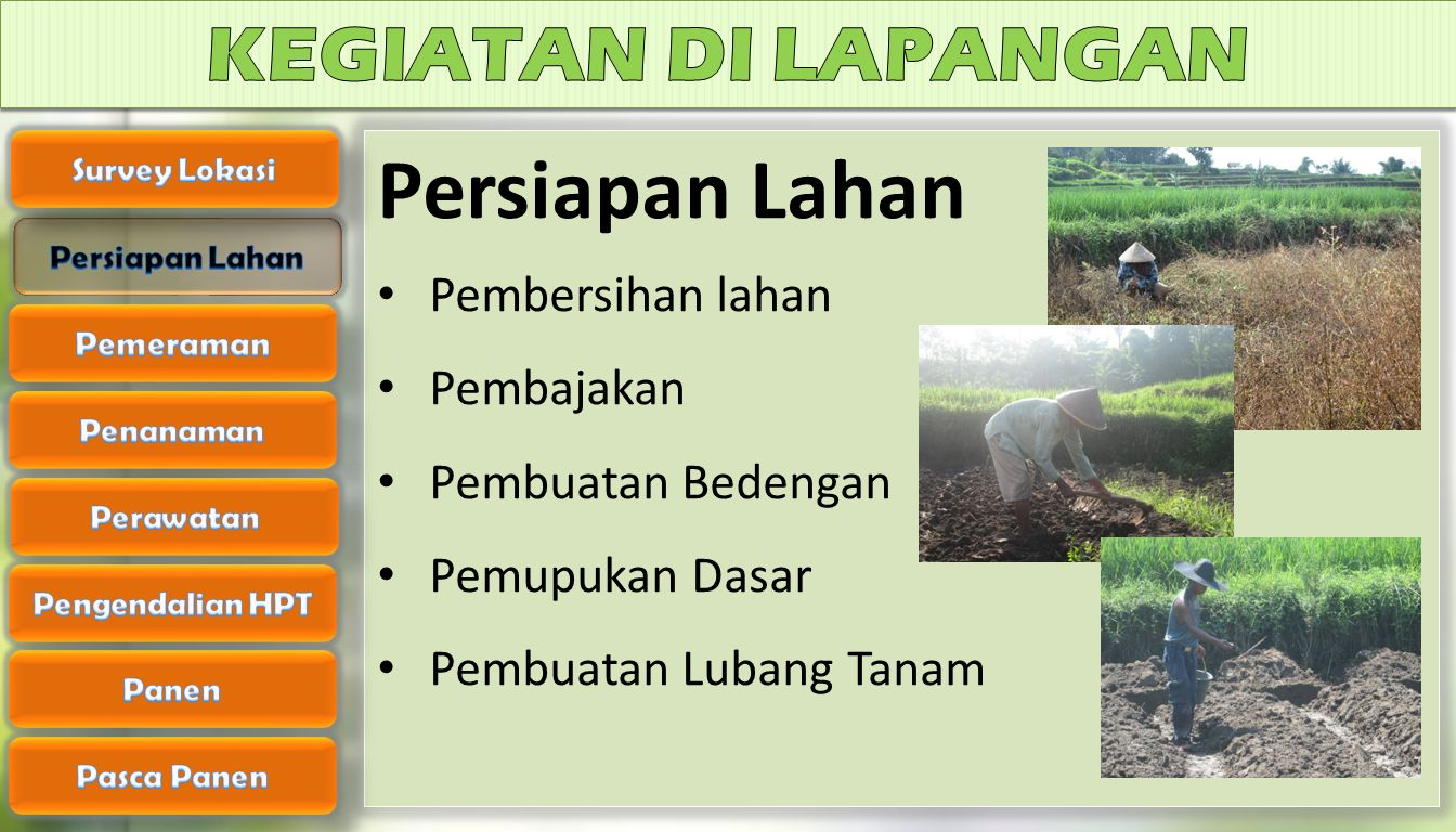 Persiapan Lahan KEGIATAN DI LAPANGAN Pembersihan lahan Pembajakan