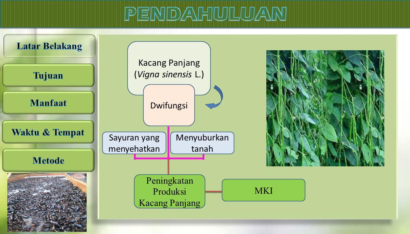 PENDAHULUAN Latar Belakang Kacang Panjang (Vigna sinensis L.) Tujuan