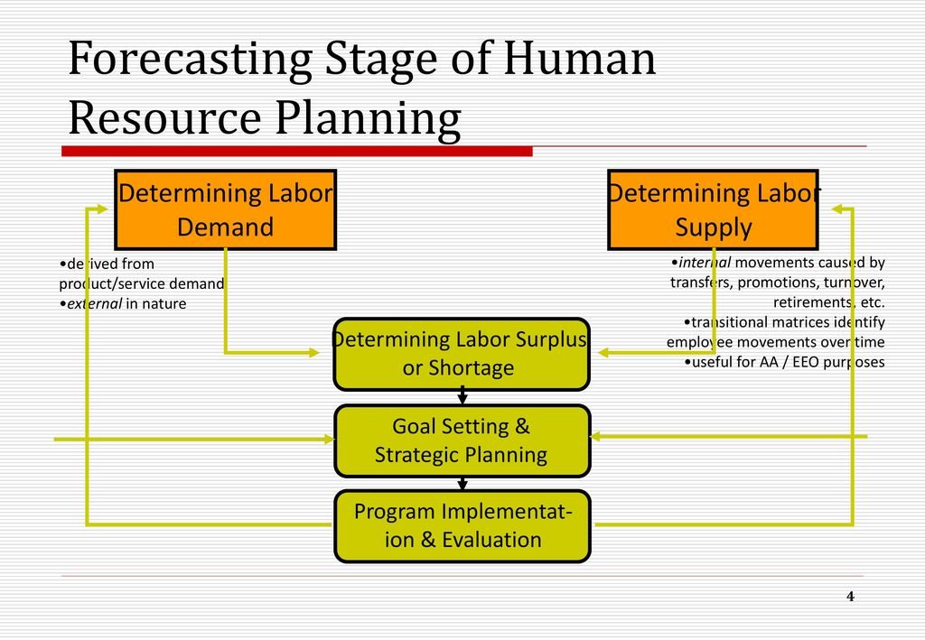 Human Resource Planning and Forecasting - Essay Example