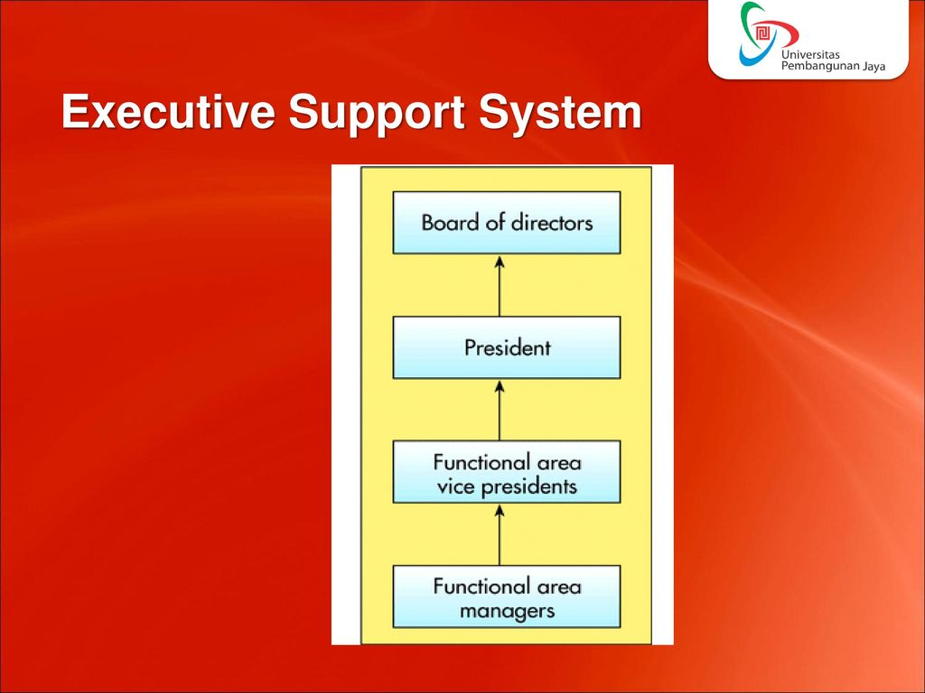 executive support system Executive support systems (ess) help executives organize their interactions with the external environment by providing graphics and communications types of systems.
