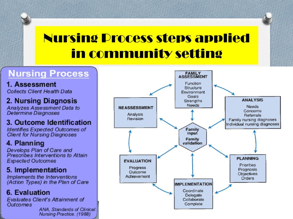steps of family health nursing process Visit the post for more family health nursing process is a systematic approach to help the family to solve the health problems download and read for more.