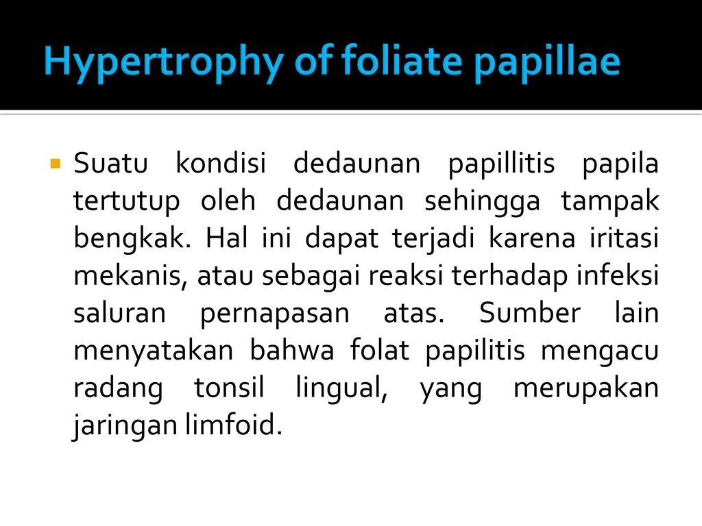 Foliate papilla  definition of foliate papilla by Medical
