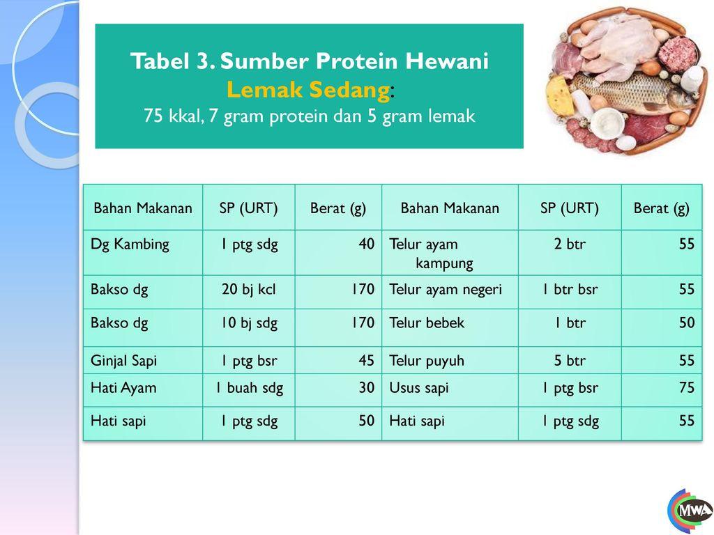 Tabel 3. Sumber Protein Hewani