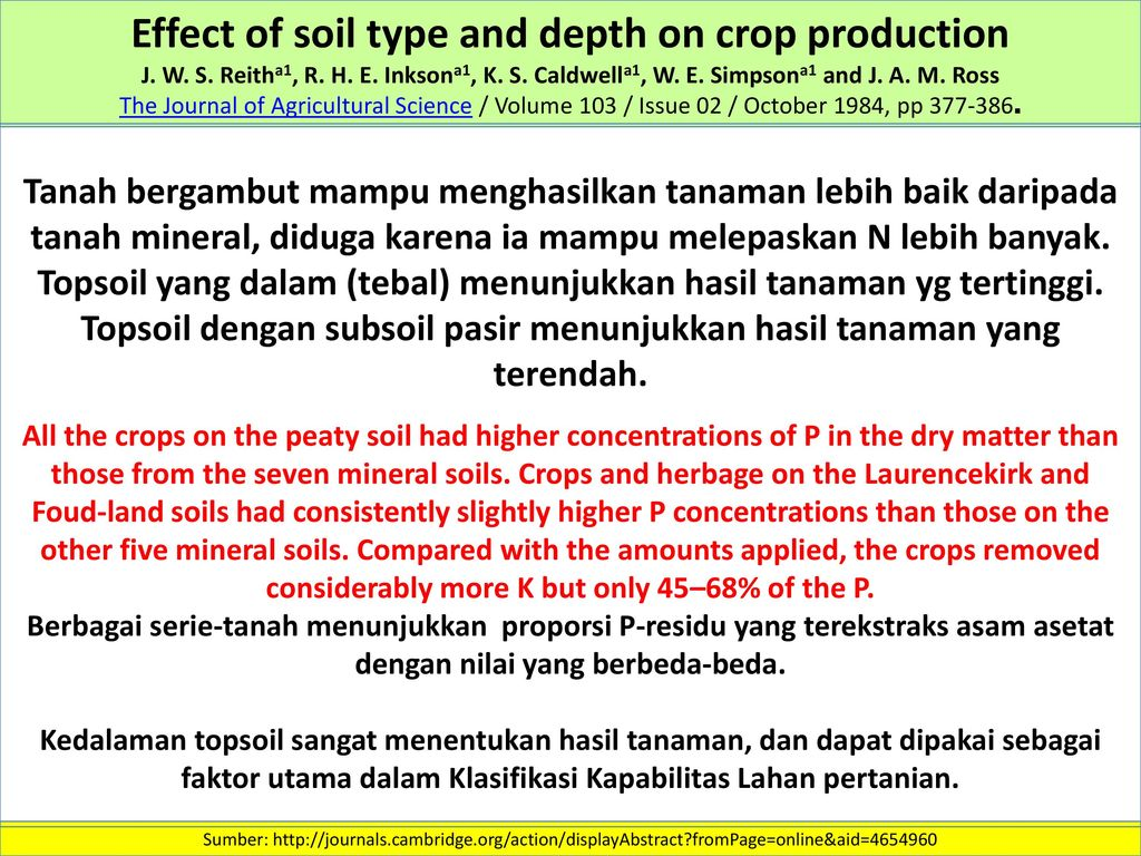 type of soil that produces the 28 all by itself the soil produces grain first the stalk then the head then the from rel 2300 at university of south florida type: fill in the blank.