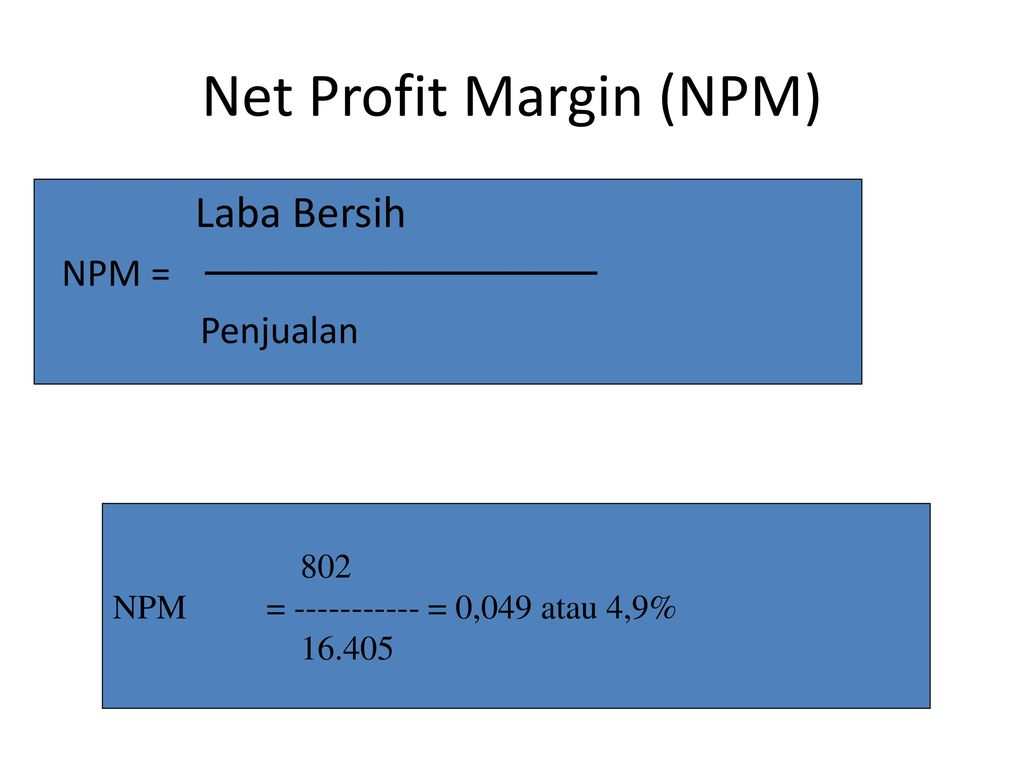 Net Profit Margin (NPM)