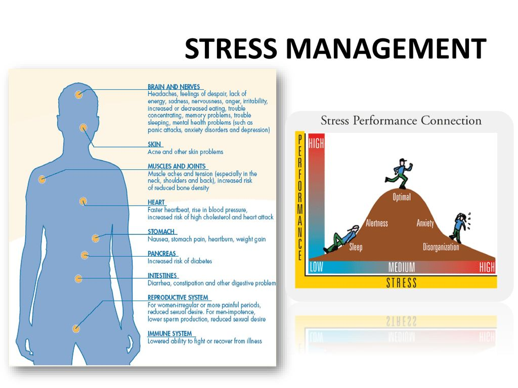 stress and performance Relationship between stress and job performance, article posted by gaurav akrani on kalyan city life blog.