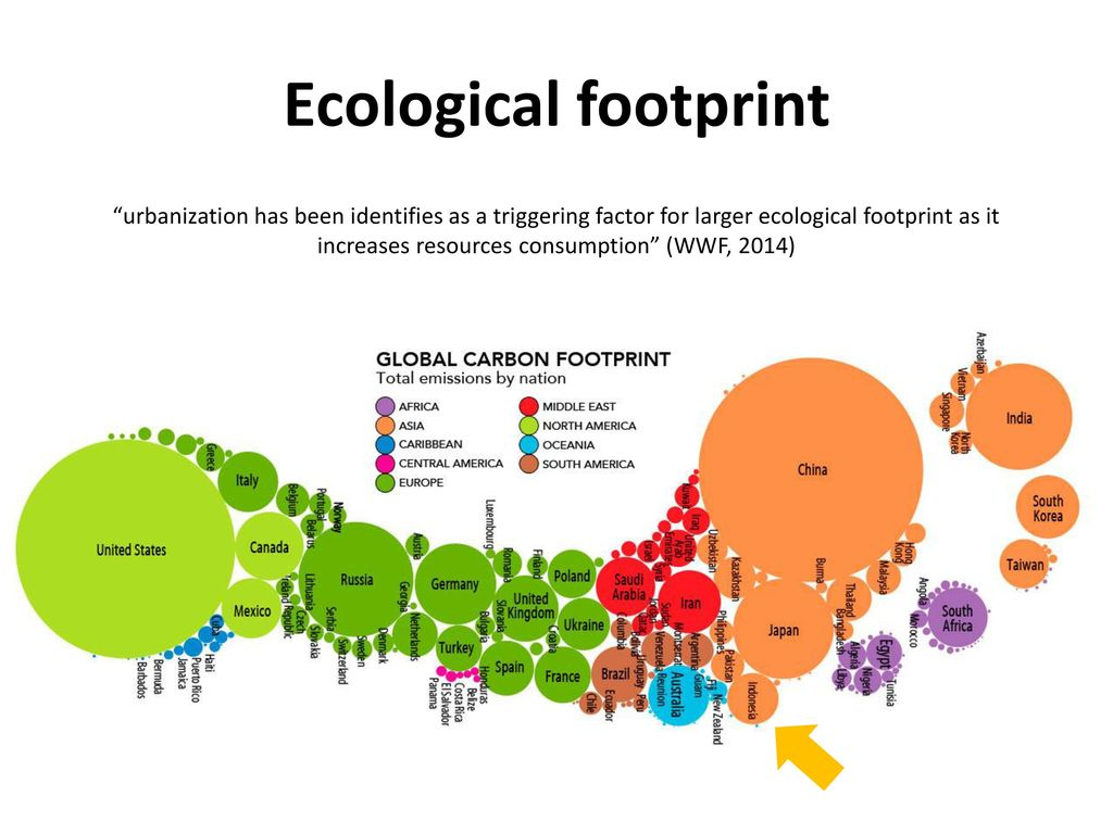 ecological footprint reflection Start studying bio 48 learn what was her ecological footprint during the week which of the following answer choices is not a direct reflection of this.