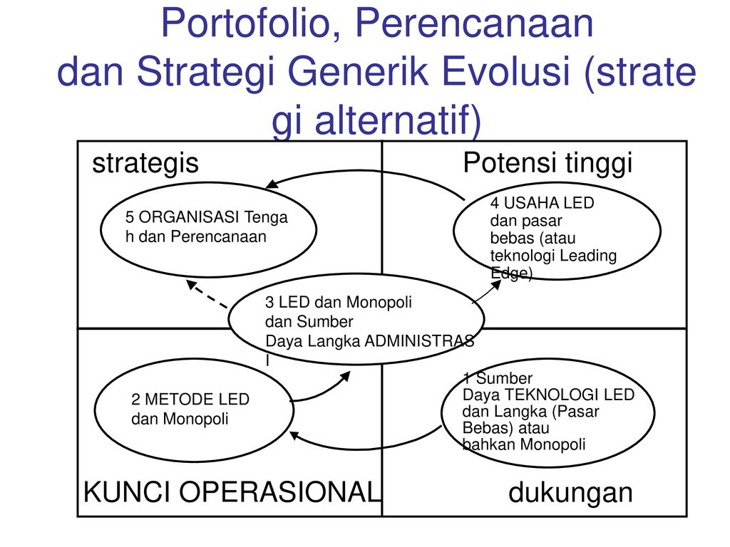 Portofolio, Perencanaan dan Strategi Generik Evolusi (strategi alternatif)