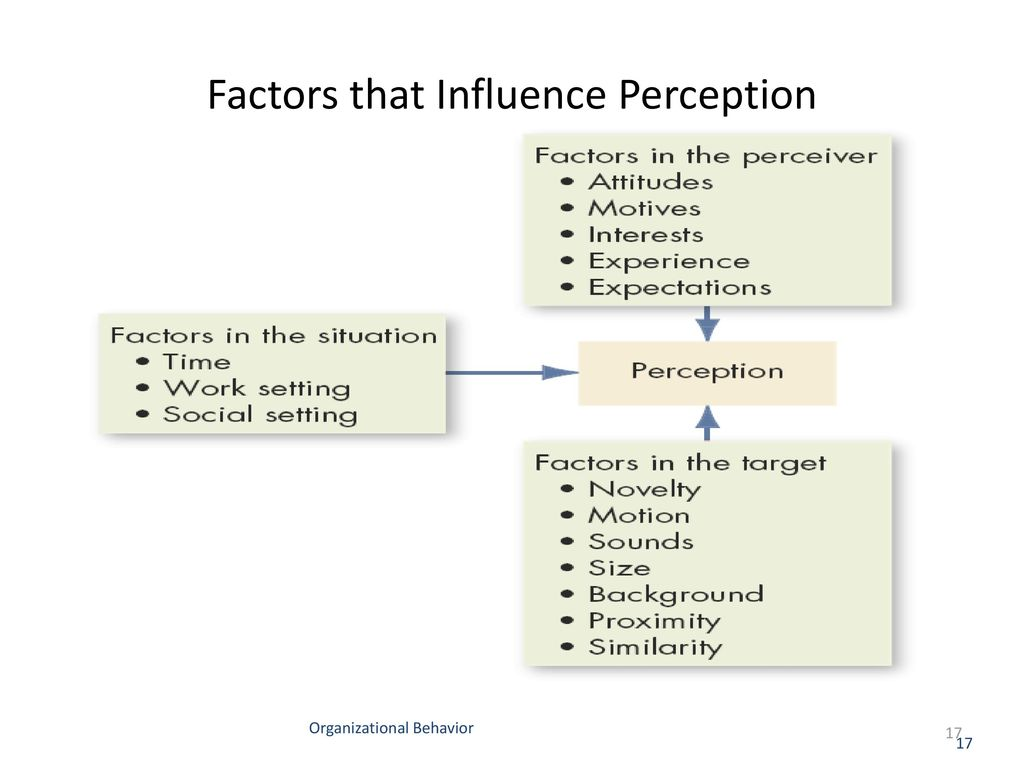 factors influencing social perception