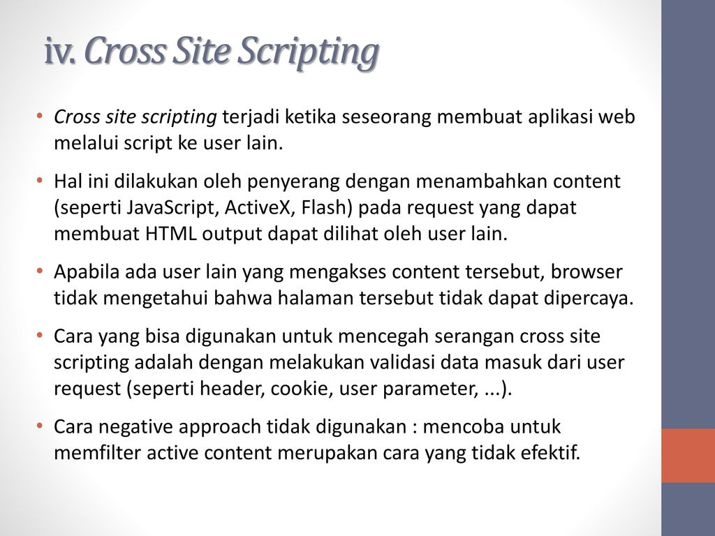 cross site scripting essay