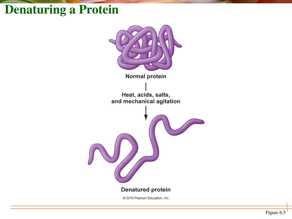 denaturing of proteins Disulfide bonds we can denature the proteins by disrupting the h-bonds that are within the structure when this happens the overall shape of the protein changes and new properties can be observed the shape of a protein is associated with food processing properties, such as solubility, gel formation, and enzyme activity.