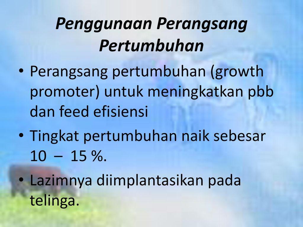 Penggunaan Perangsang Pertumbuhan