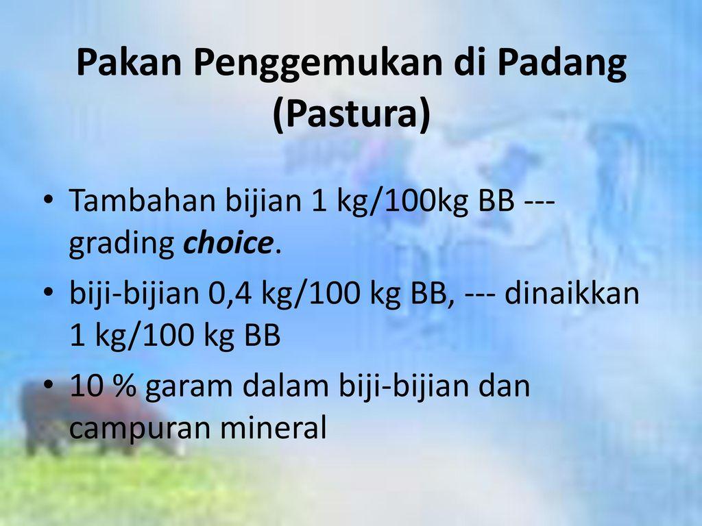 Pakan Penggemukan di Padang (Pastura)