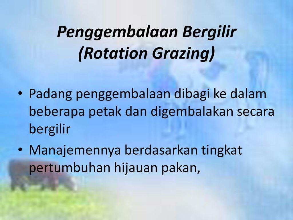 Penggembalaan Bergilir (Rotation Grazing)