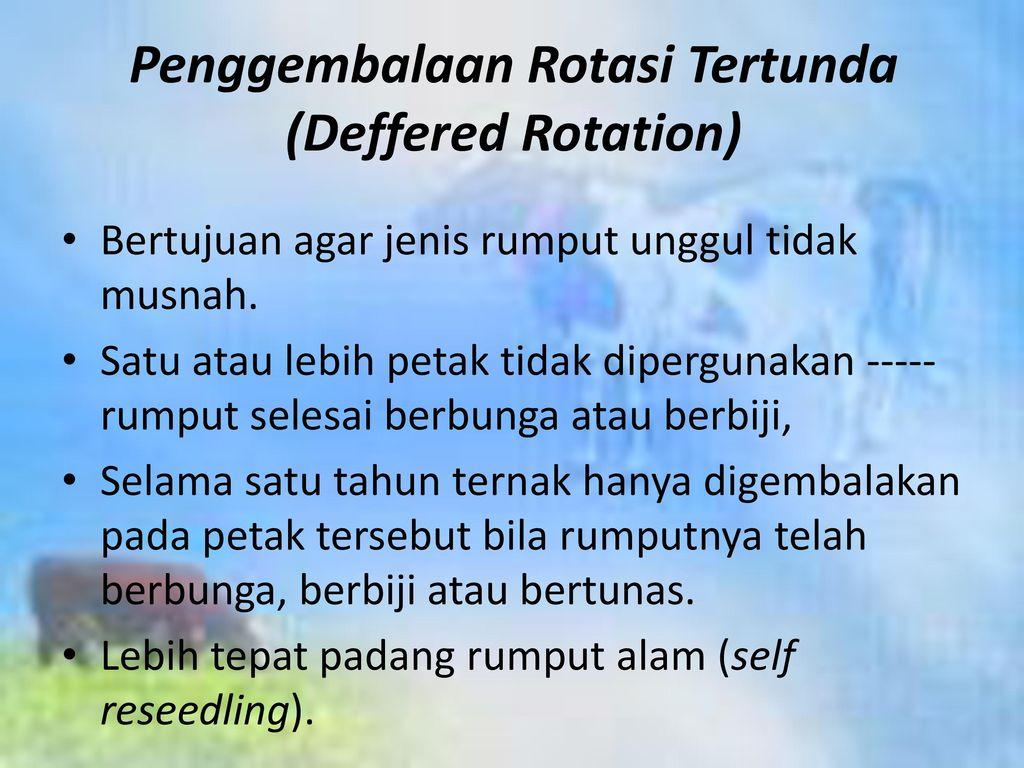 Penggembalaan Rotasi Tertunda (Deffered Rotation)