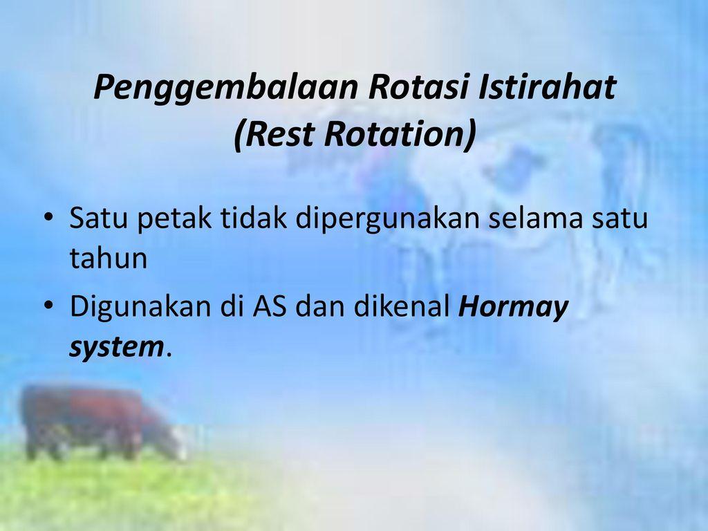 Penggembalaan Rotasi Istirahat (Rest Rotation)