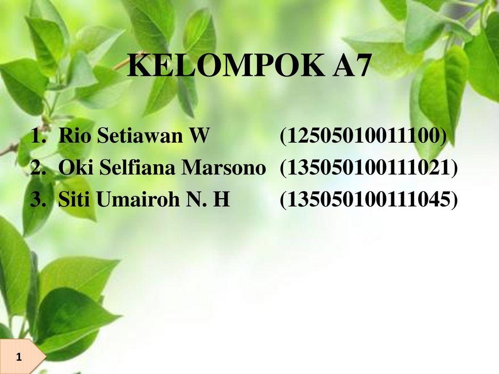 KELOMPOK A7 Rio Setiawan W (12505010011100)