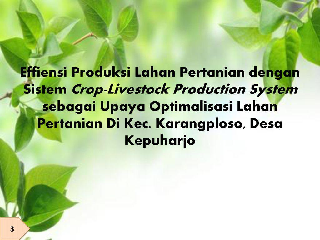 Effiensi Produksi Lahan Pertanian dengan Sistem Crop-Livestock Production System sebagai Upaya Optimalisasi Lahan Pertanian Di Kec. Karangploso, Desa Kepuharjo